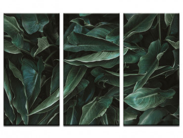 Tableau botanique Green Leaves