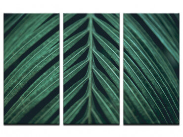 Tableau feuille Palmen