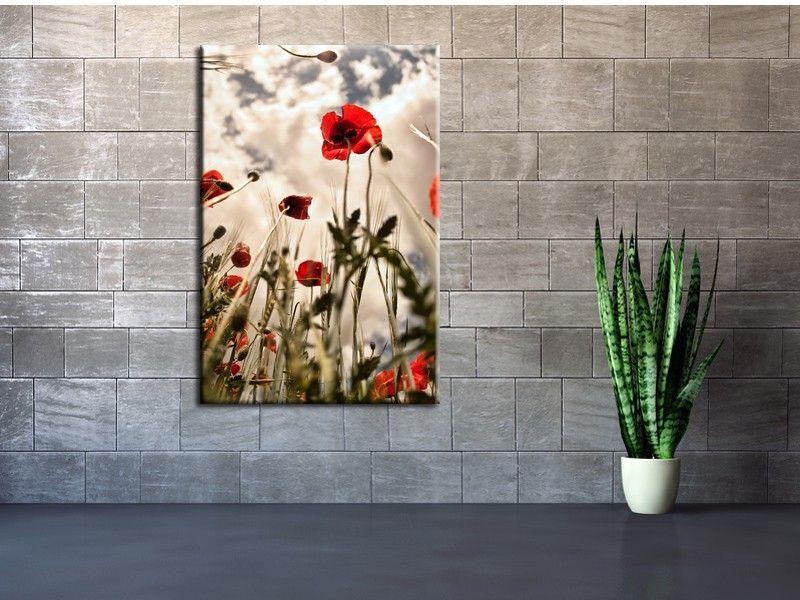 Cadre Mural Moderne Noir De Photos : Tableau fleur coquelicots d� coration murale moderne pas chère
