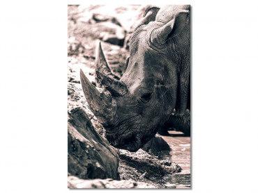 Tableau Rhinoceros hommage à sudan..