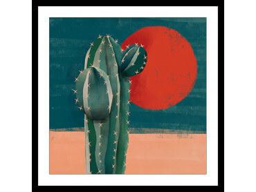 Illustration Cactus et Soleil rouge