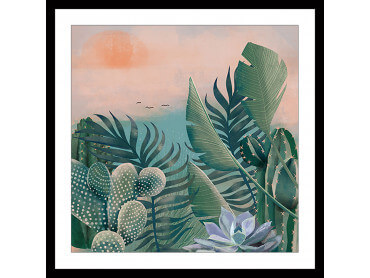 Affiche illustration Jardin succulentes et Cie