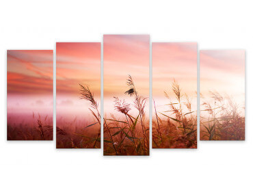 Tableau Photo Paysage Champ de Blé au Coucher, 150x80cm