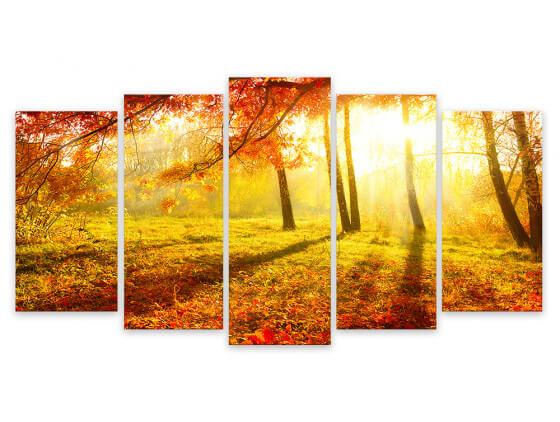 Tableau Moderne, Tableau Photo Balade Automnale en Forêt , 150x80cm