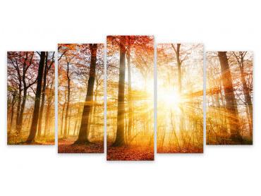 Tableau Coucher Soleil en Forêt , 150x80cm