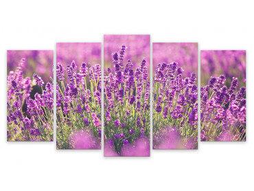 Tableau Fleurs Lavande En Provence, 150x80cm