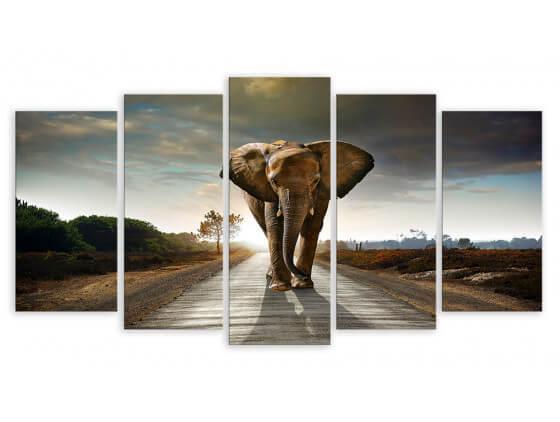 Multi panneaux Elephant On The Road, 150x80cm