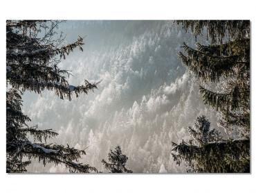 Tableau Paysage Forest in Fog Drama