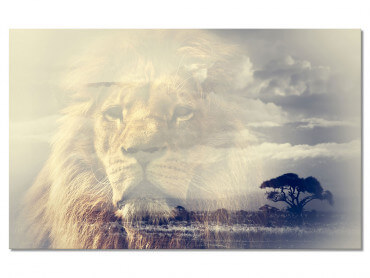 Tableau Animaux Lion and Mount Kilimanjaro