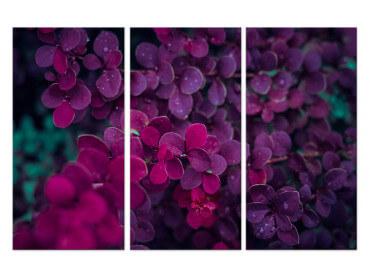 Tableau Fleurs de Lilas au Printemps