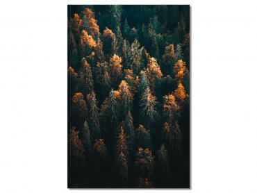 Tableau Paysage couleur d'automne en Haute Savoie