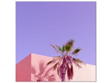 Tableau photo Pink Palma