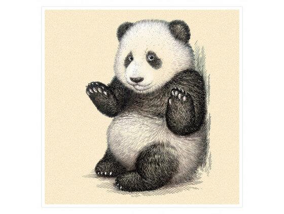 Affiche Enfant Illustration Vintage Panda