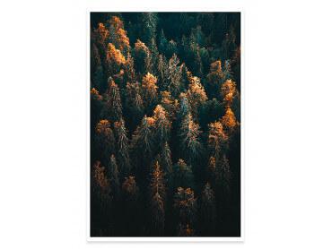 Affiche Paysage couleur d'automne en Haute Savoie