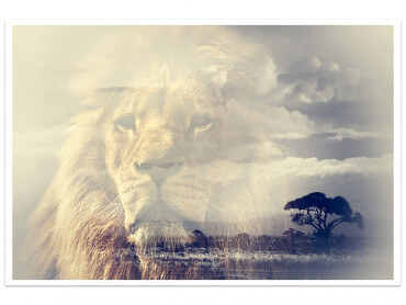Affiche Animaux Lion and Mount Kilimanjaro