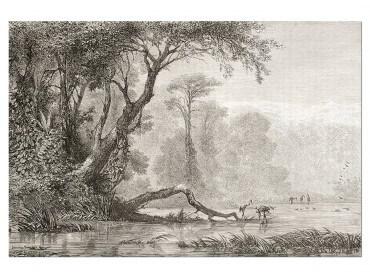 Tableau Gravure Les bords du fleuve