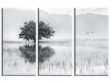 Tableau Nature Reflets d'eau