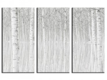 Tableau Nature Perspective Trees