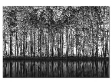 Tableau Nature Pointillisme