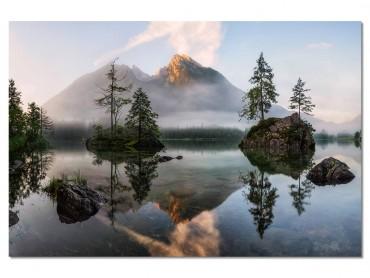 Tableau Deco Nature's awakening