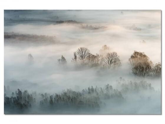 Tableau Paysage brouillard hivernal