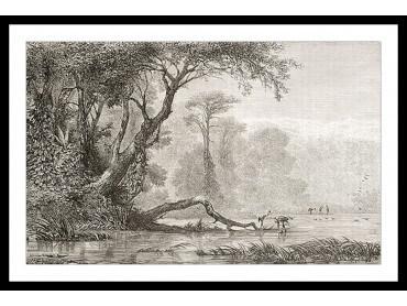 Affiche Gravure Les bords du fleuve