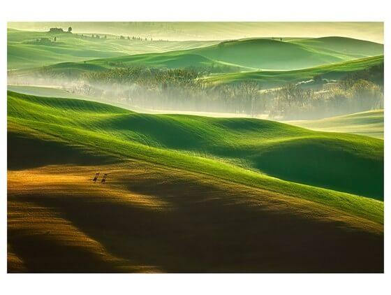 Affiche Nature collines brumeuses