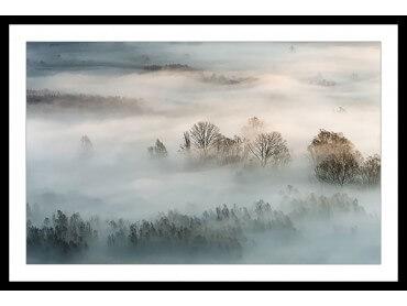 Affiche Paysage brouillard hivernal