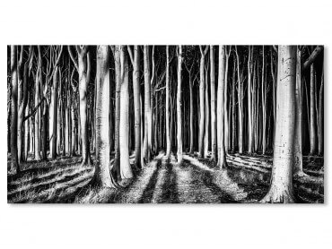 Tableau Paysage forêt fantome