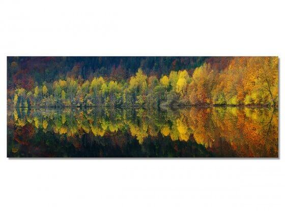 Tableau Paysage Lac et forêt
