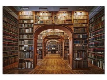 Tableau Photo Librairie des Sciences