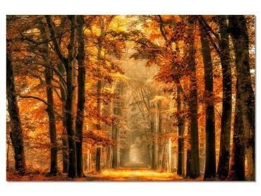 Tableau Paysage Magie de l' automne
