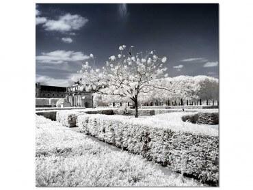 Tableau Photo Le Louvres blanc