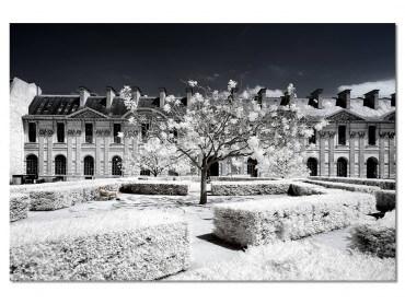Tableau Paris - Le Louvre jardin des tuileries