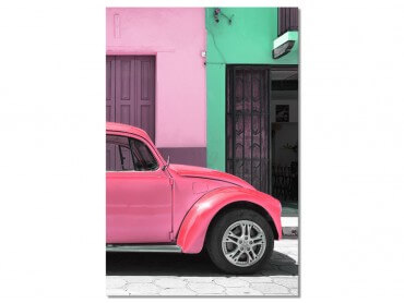 Tableau Photo Mexico Matching pink