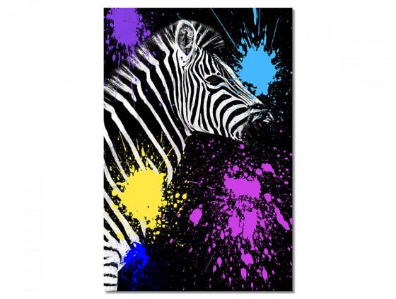 Tableau Animaux Zebre Pop art