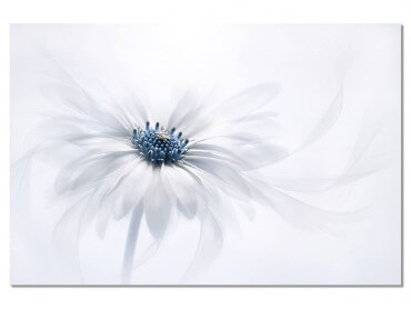 Tableau Fleur au coeur bleu