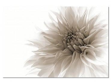Tableau Fleurs Dahlia en monochrome