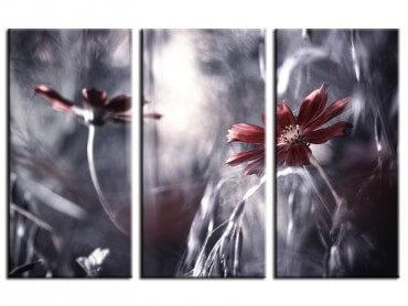 Tableau photo romance florale