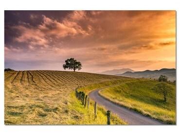Tableau Chemin des Basques