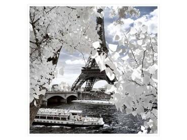 Tour Eiffel fleurie Affiche deco