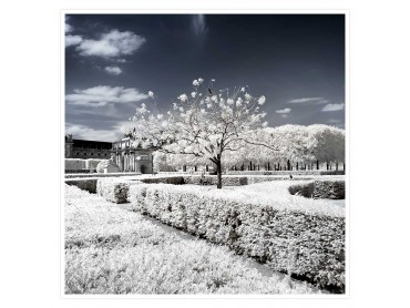Le Louvres blanc Affiche Photo