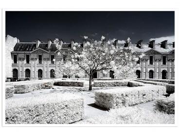 Affiche Paris - Le Louvre jardin des tuileries