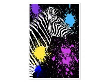 Affiche Animaux Zebre Pop art