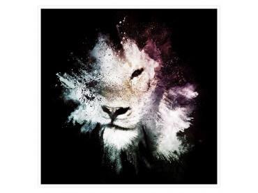 Lion Wild Explosion Affiche animaux