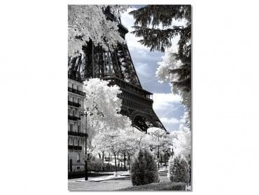 Tableau deco Au pied de mon arbre... Paris