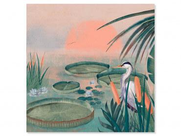 Tableau illustration Petit héron des roseaux