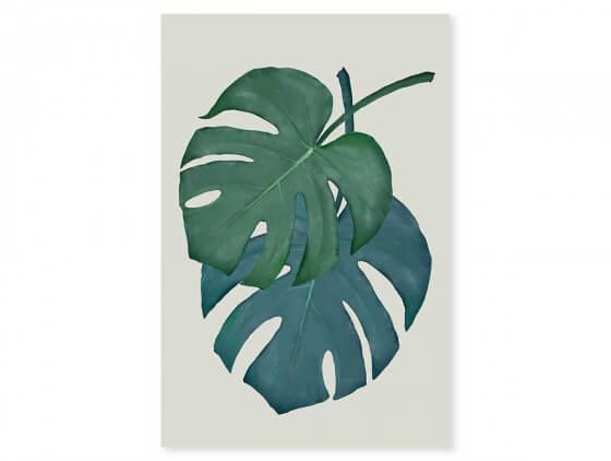 Tableau jungle Monstera turquoise