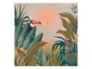 Illustration Toucan au coucher du soleil - Affiche