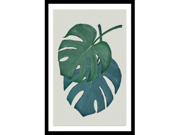 Affiche Jungle Monstera turquoise